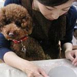 おとなしい子なら同伴OK、ペットと一緒に作るペット陶芸体験
